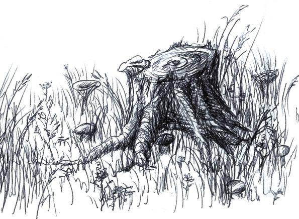 Aleksandra Kiczuk Ilustracje Do Wiersza Marzenia